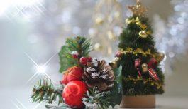 【12/14-12/25】クリスマス(桝)フェア
